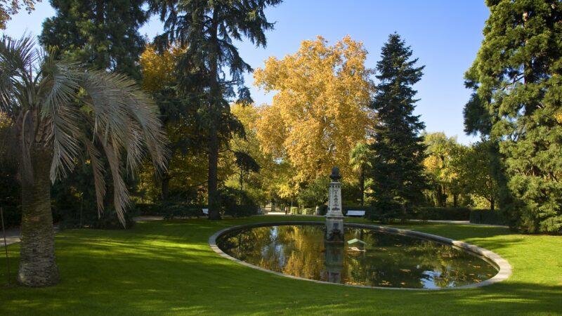 Real Jardín Botánico 01